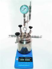 50ML微型高壓反應釜圖片