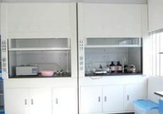 化验室全木通风柜/通风橱