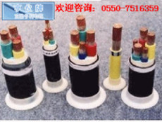 DYJF-0.6/1KV盘锦计算机电缆 水利投资