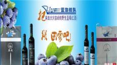 蓝莓饮料系类蓝莓酒美味新口感