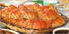 蕪湖固城湖螃蟹專賣電話